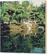 Pond Of Mirrors Wood Print