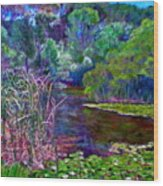 Pond Of Tranquility Wood Print