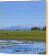 Pond Pasture And  Rocky Mountains Wood Print