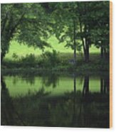 Pond Reflect Wood Print