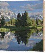 Pond Reflection At Schwabacher Landing Wood Print
