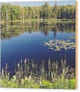 Pond To Ponder Wood Print
