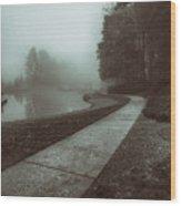 Pond Walk In Black And White Wood Print