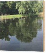 Pond With Ducks Wood Print