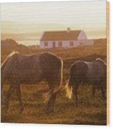Ponies Grazing In A Field, Connemara Wood Print