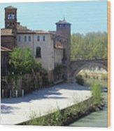 Ponte Cestio Wood Print