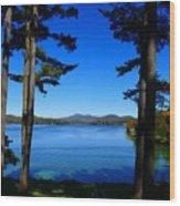 Pontoosuc Folaige 2 Wood Print