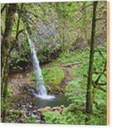 Ponytail Falls, Oregon Wood Print
