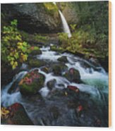 Ponytail Falls With Autumn Foliage Wood Print