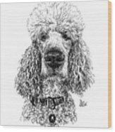 Poodle @standerdpoodle Wood Print