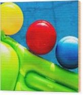 Pool Toys Wood Print