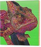 Pop Art Chameleon Wood Print