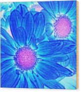 Pop Art Daisies 6 Wood Print