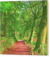Pop Art Path Wood Print