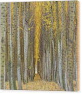 Poplar Tree Farm In Boardman Oregon In Fall Closeup Wood Print