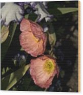 Poppies 6 Wood Print