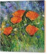 Poppies 79 Wood Print
