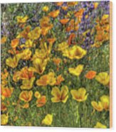 Poppies And Lupines Wood Print