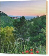 Poppies And The Alhambra Palace Wood Print