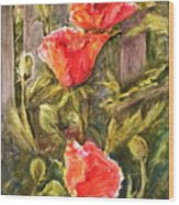 Poppies By The Fence Wood Print
