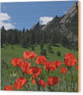 Poppies Flatirons Wood Print