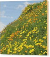 Poppies Hillside Meadow 17 Blue Sky White Clouds Giclee Art Prints Baslee Troutman Wood Print
