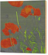Poppies In Neon Wood Print