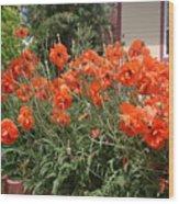 Poppies In Springtime Wood Print