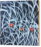 Poppies In The Grass Wood Print
