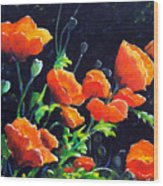 Poppies In The Light Wood Print