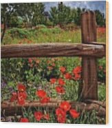 Poppies In The Texas Hill Country Wood Print