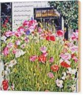 Poppies On Niagara Street Wood Print by David Lloyd Glover