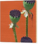 Poppies On Orange Wood Print