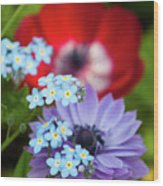 Poppy And Friends Wood Print