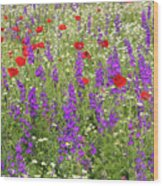 Poppy And Wild Flowers Meadow Nature Scene Wood Print