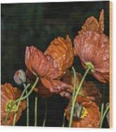 Poppy Drama Wood Print
