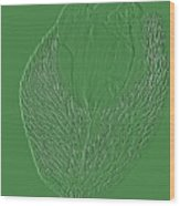 Poppy Embossing  Wood Print