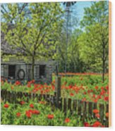 Poppy Farm Wood Print