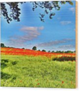 Poppy Field Wood Print