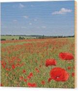 Poppy Fields 1 Wood Print