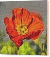 Poppy - Id 16235-142749-5072 Wood Print