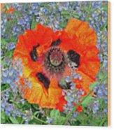 Poppy In Blue Wood Print