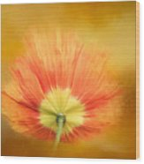 Poppy On Fire Wood Print