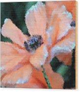 Poppy Primadonna Wood Print