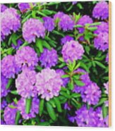 Pops Of Purple Wood Print