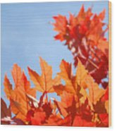 Popular Autumn Art Red Orange Fall Tree Nature Baslee Troutman Wood Print