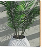 Porch Plant Wood Print