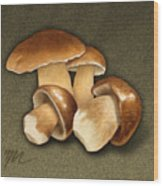 Porcini Mushrooms Wood Print by Marshall Robinson