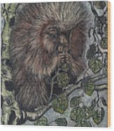 Porcupine In Aspen Wood Print