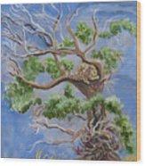 Porcupine In Cottonwood Wood Print